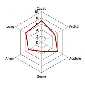Profil Chocolat Noir - Cranberry & Gingembre